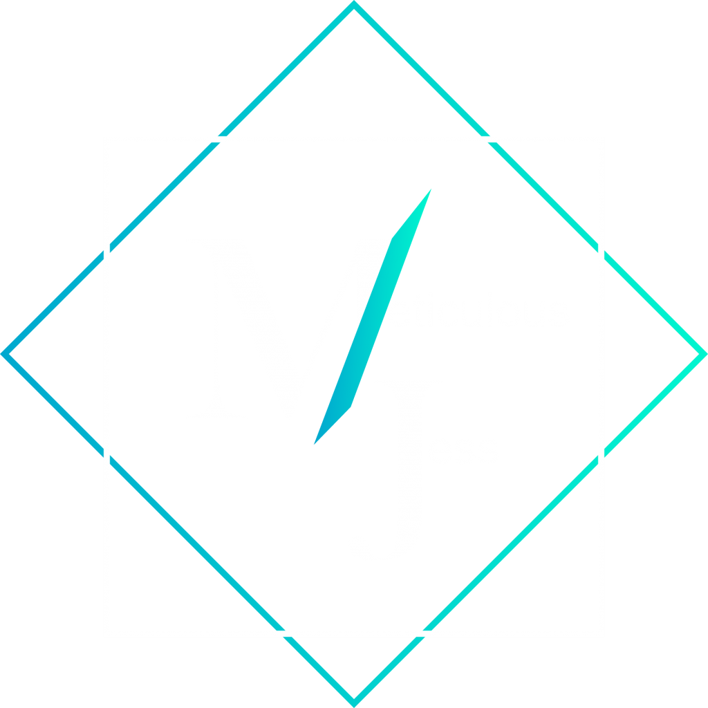 meticulous jess marketing tampa florida