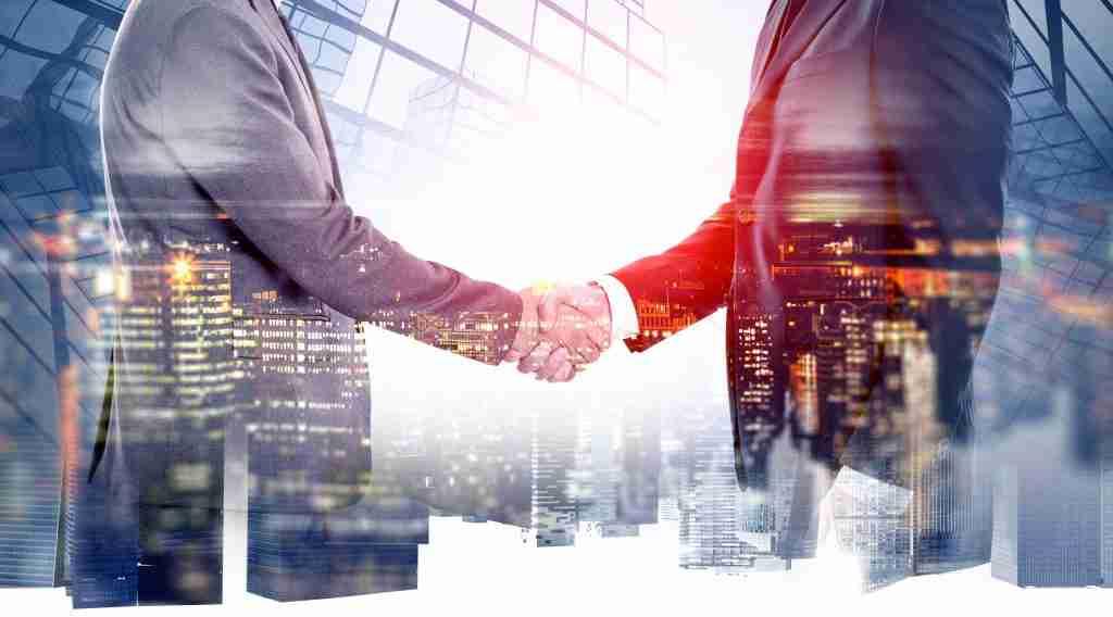 digital marketing agency partnerships tampa fl
